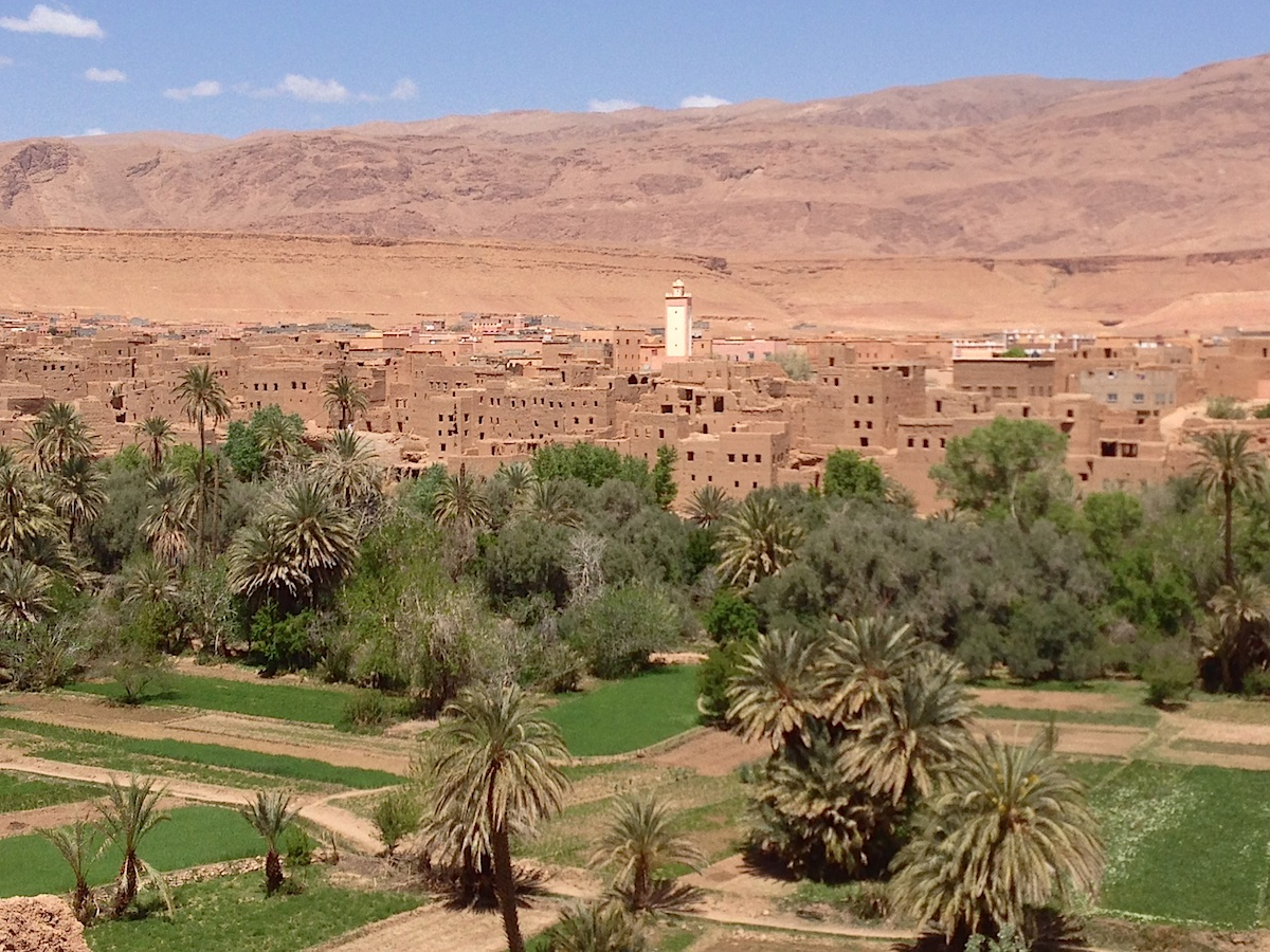 full day trip to skoura oasis palms from ouarzazate