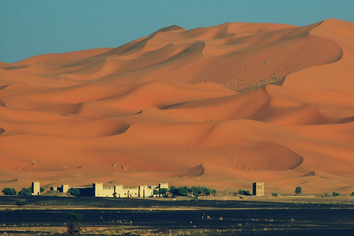 8 Days New Year's Desert tour From Casablanca